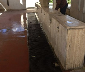 rubinetti rubati fontanella via Palma