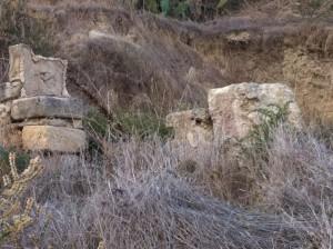 la domus di via S. Maria nascosta dalle erbacce