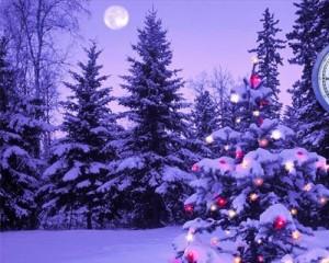 Paesaggio-Auguri-di-Buon-Natale-su-Facebook-2012