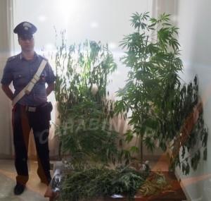 carabinieri 159-2