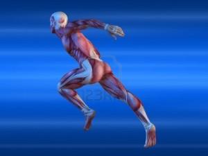 medicina dello sport 2